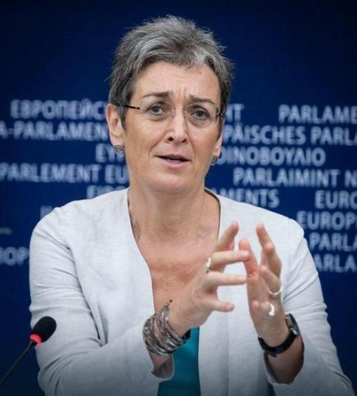 Европарламент, Евросоюз, Ульрике Луначек