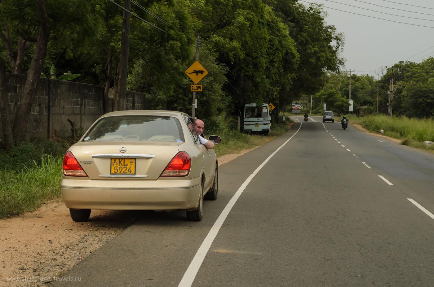 Фото 3. Мы взяли в аренду машину Nissan Bluebird Sylphy и самостоятельно проехали около 1200 км по дорогам Шри-Ланки. Отчеты туристов об отдыхе дикарями на Цейлоне в мае. Все фотографии в отчете сняты на любительскую зеркальную камеру Nikon D5100 KIT 18-55. Параметры съемки: выдержка 1/1250, диафрагма f/7.1, ISO640, фокусное расстояние 44.