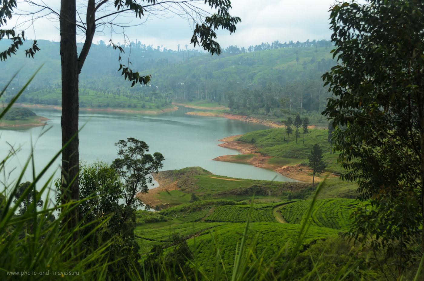 Фото 20. Водохранилище Маскелия (Maskeliya Reservoir) в районе Пика Адама. Отзывы туристов о самостоятельной экскурсии. Шри-Ланка в мае.