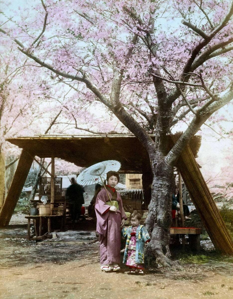 Женщина и ребенок под вишневым деревом