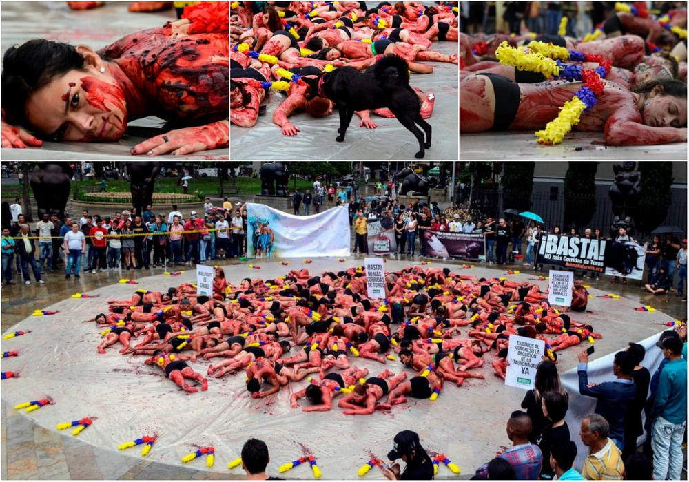 Half-naked activists protest against bullfighting in Colombia