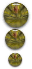 кнопочки 2.png