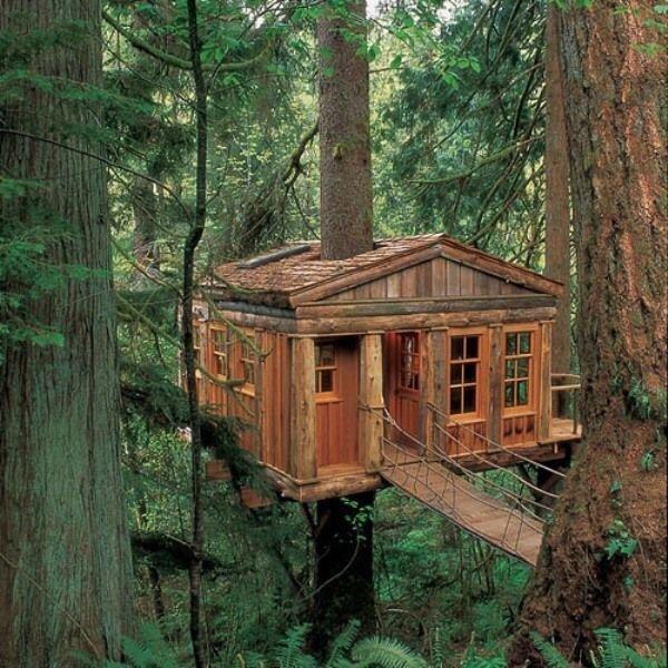0 180192 964dc31c orig - Дом на дереве - кто о нем не мечтал в детстве?