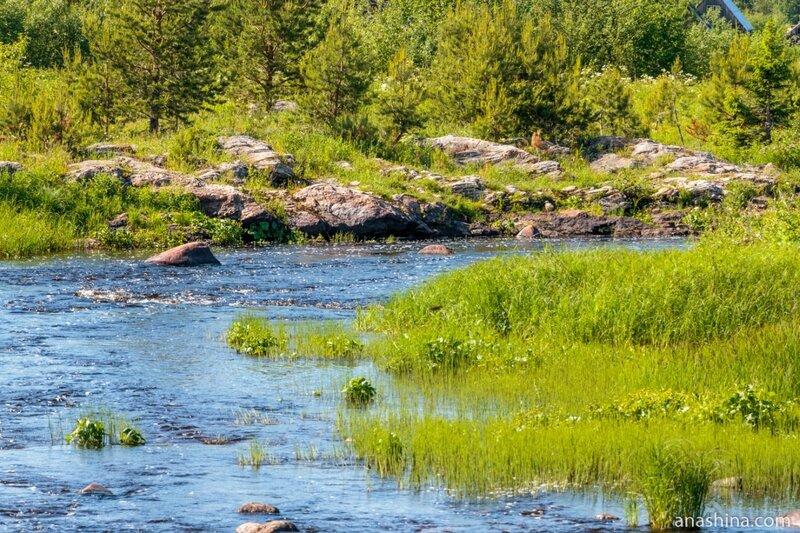 Скальные выходы на берегу реки Пяльмы, Карелия
