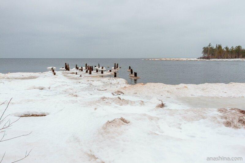 Онежское озеро, река Андома, Вологодская область