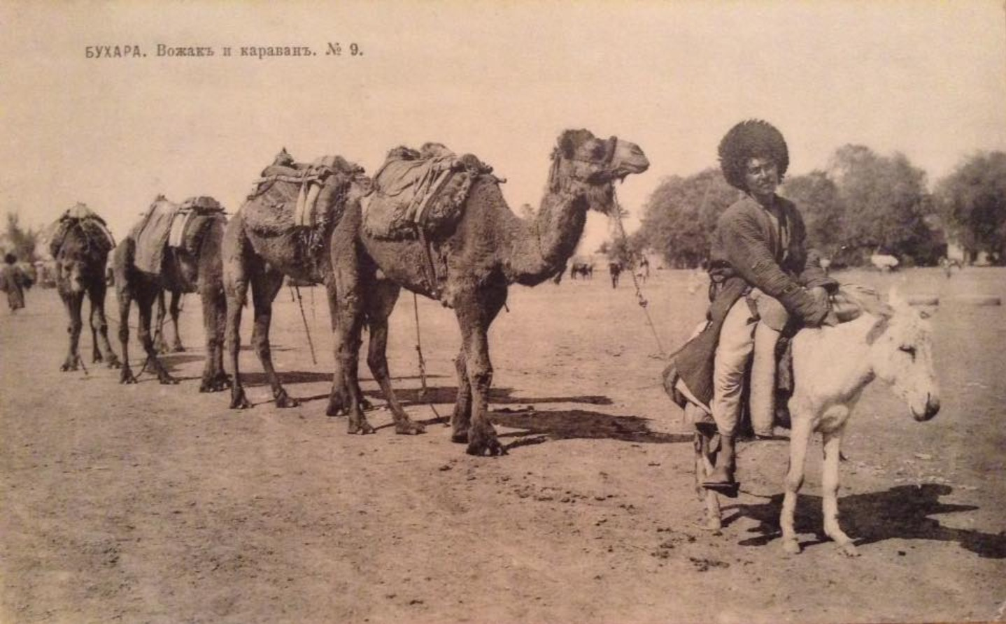 Вожак и караван