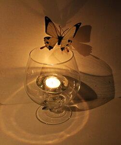 Свет. Тень. Бабочка.