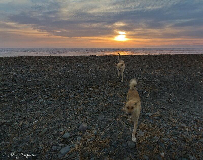 Baikal_2015_03_From-Sun.jpg