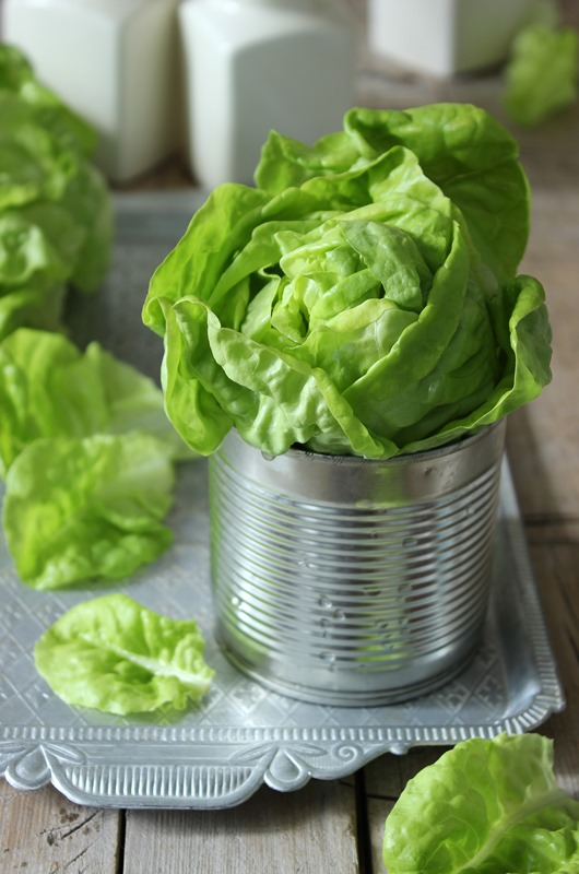 Fresh green lettuce salad. Selective focus, rustic style.