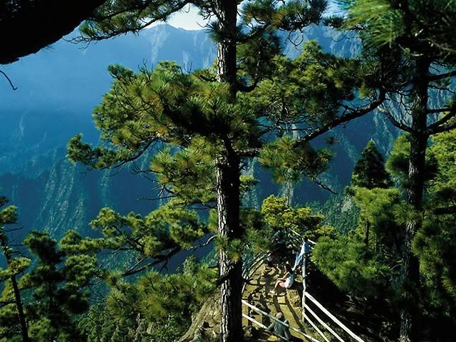 Остров La Palma - основное место жительства Дюваля 0_307a61_1aae8569_orig
