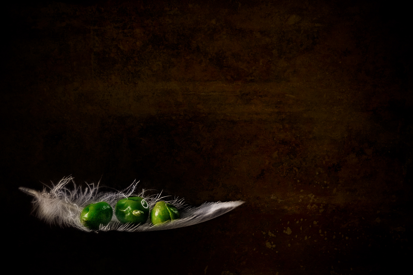 Food Art Foto
