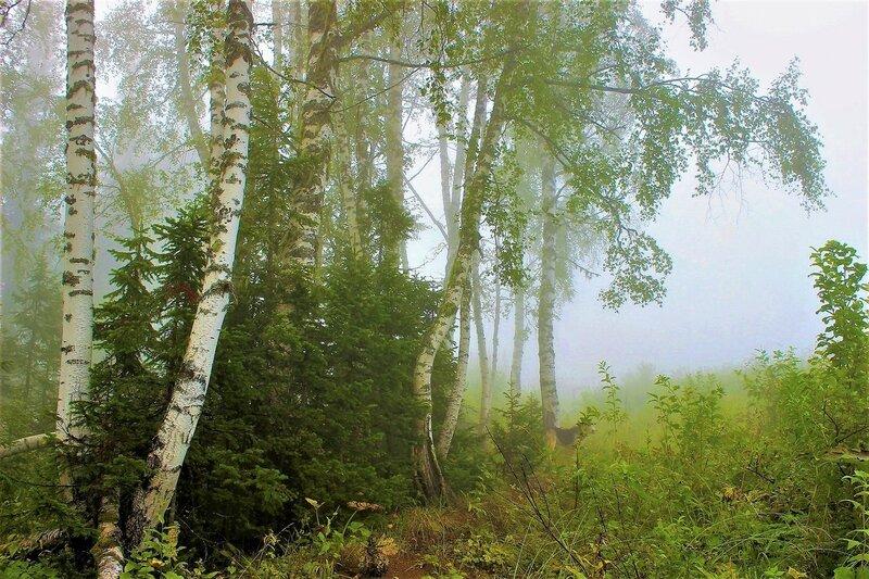 Скоро рассеется туман