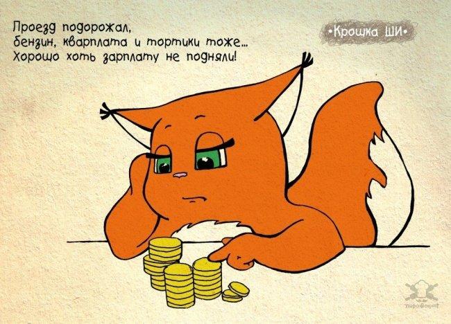 0 180071 6e5d08e8 orig - Крошка Ши  Леси Гусевой