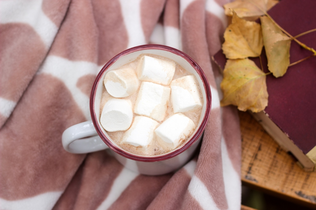 Hot cocoa with marshmallow on the background of a plaid and book. rustic style, selective focus.