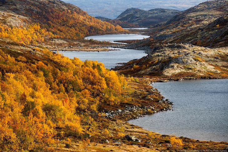 Золотая осень на Кольском полуострове. Дорога домой (18 фото)