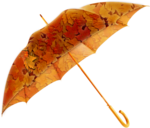 Autumn Gold #10 (145).png