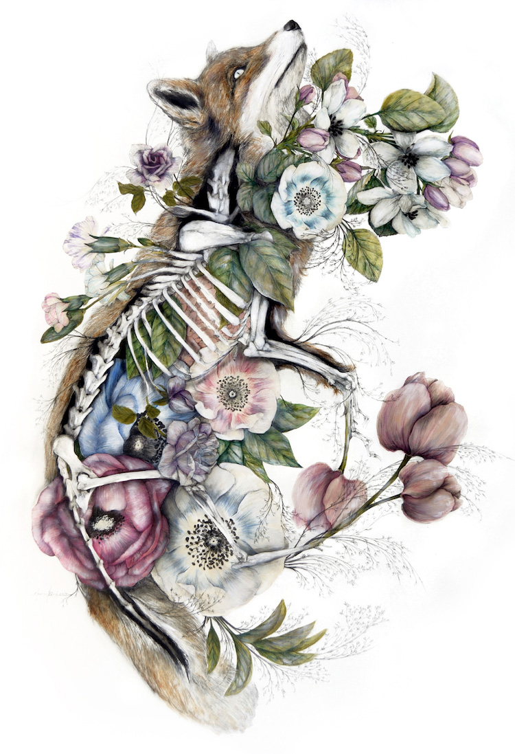 Anatomical Art Combines Animals with the Flora of the Philippines