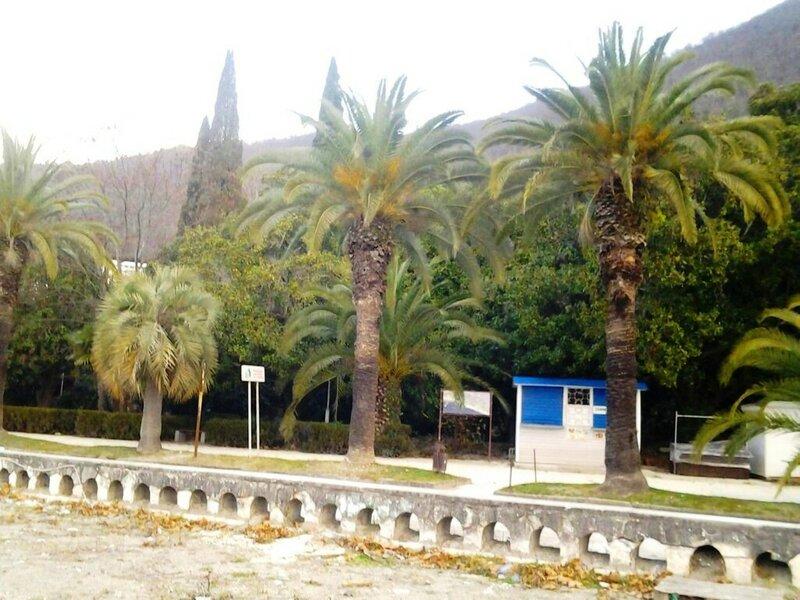В Абхазии, 30.12.17., фото В. Лана (1).jpg