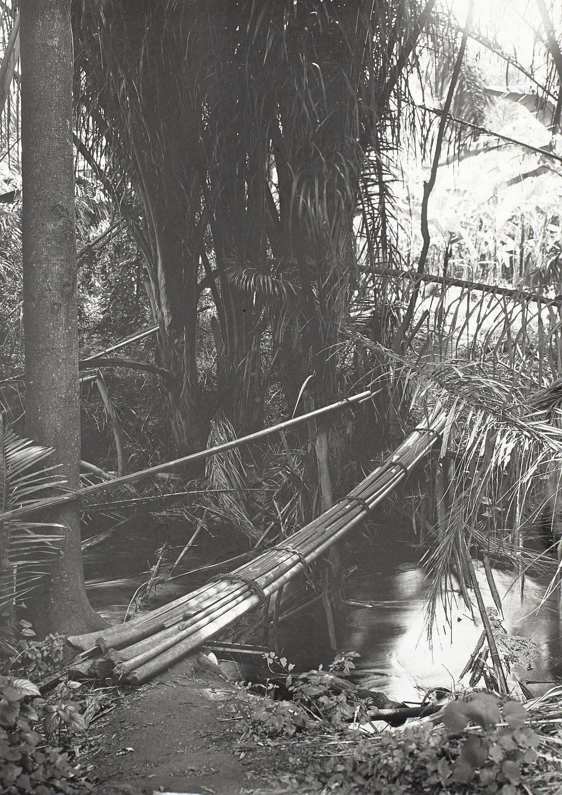 14. Килиманджаро. Мост через ручей в Галеревальде
