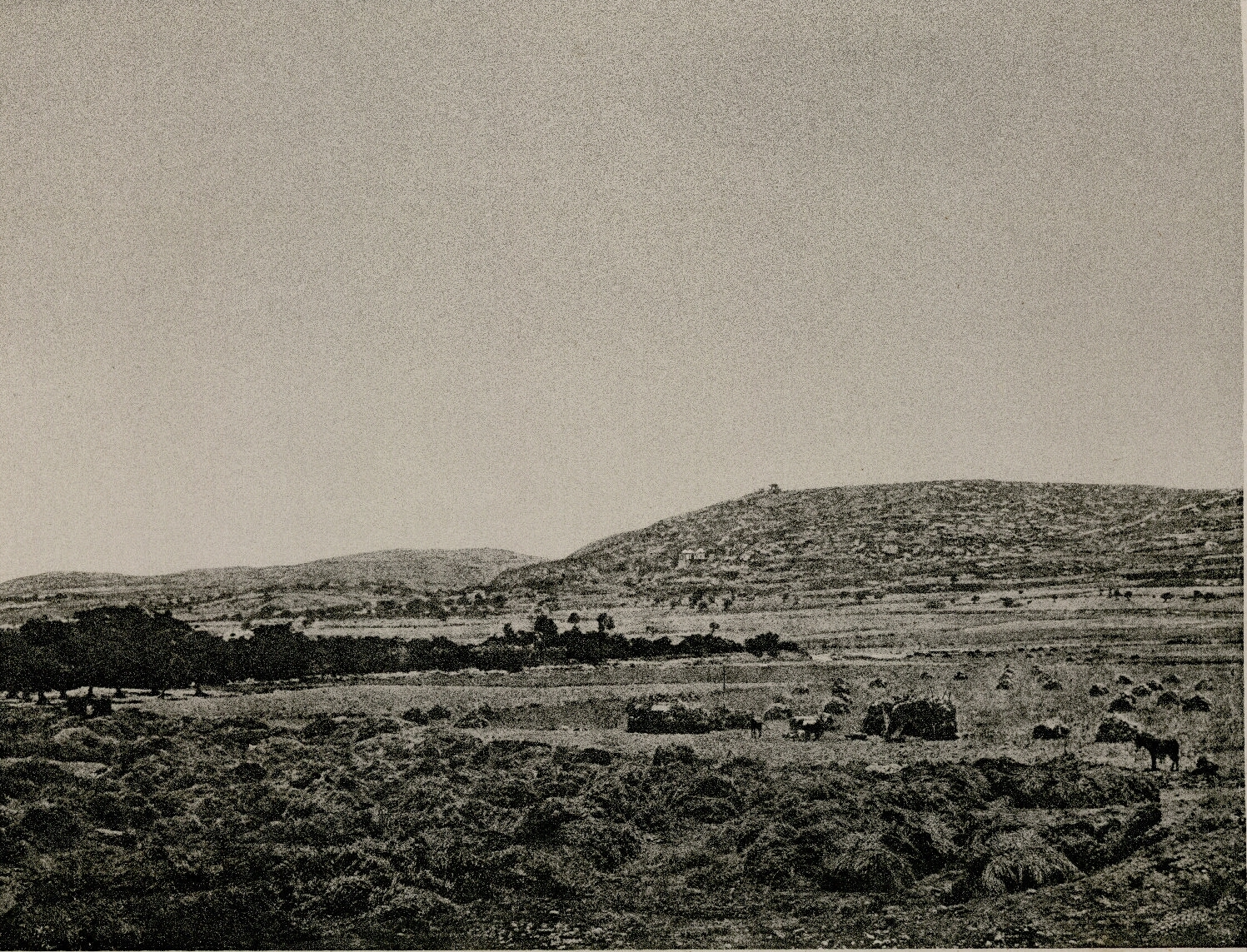 11. Сидон. Вид на Мар-Элиас из замка Сент-Луис