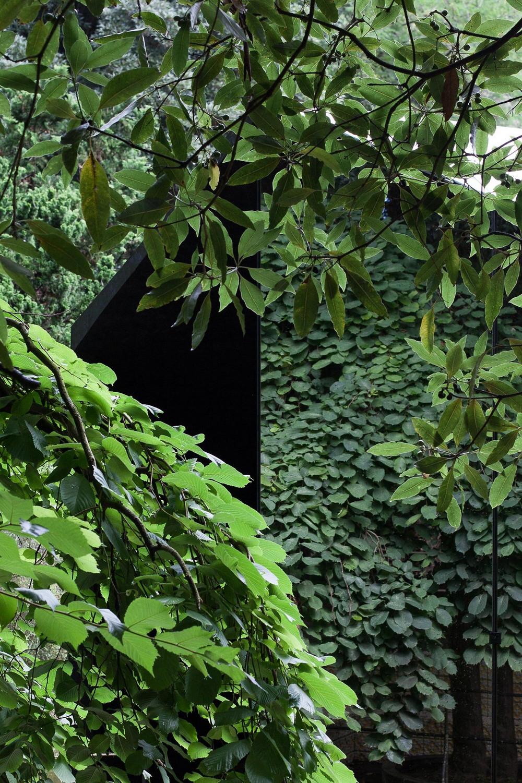 Дом-«невидимка» в Португалии объект, здания, Серральвеш, озера, берегу, Необычный, авторов, «моста», своеобразного, качестве, выступать, должны, отделка, задумке, музеем, «зеркальная», павильона, временного, Расположение, Виейрой