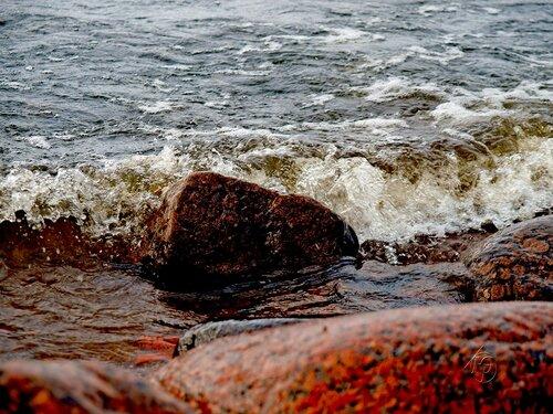 Осенняя седина  Финского залива