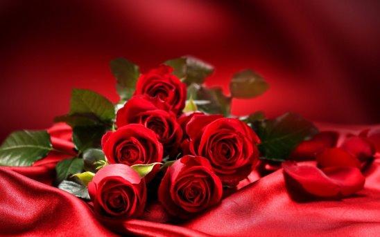 30 октября День карих глаз. Розы