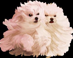 песики и собачки