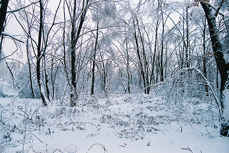 Зимняя геометрия - III.jpg