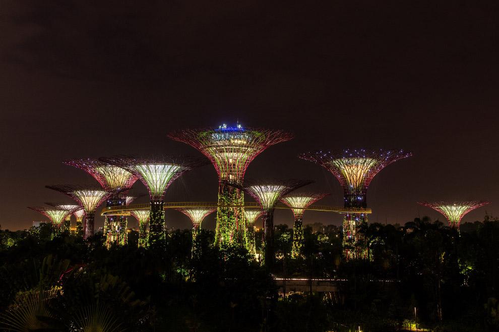 И панорамой сада. В заключении хочу сказать, если вам случиться побывать в Сингапуре, обязатель