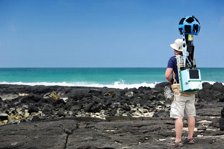 Галапагосские острова получили свое название от водившихся на них гигантских морских черепах, по-исп