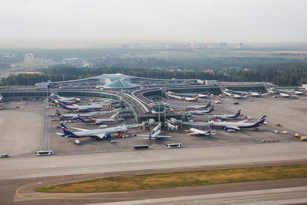 9. Эрбасы и Боинги на любой вкус у трапов международных линий терминала D.