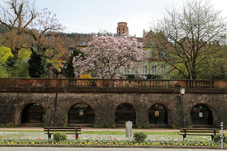 Heidelberg_201312_zps86ee4554.JPG