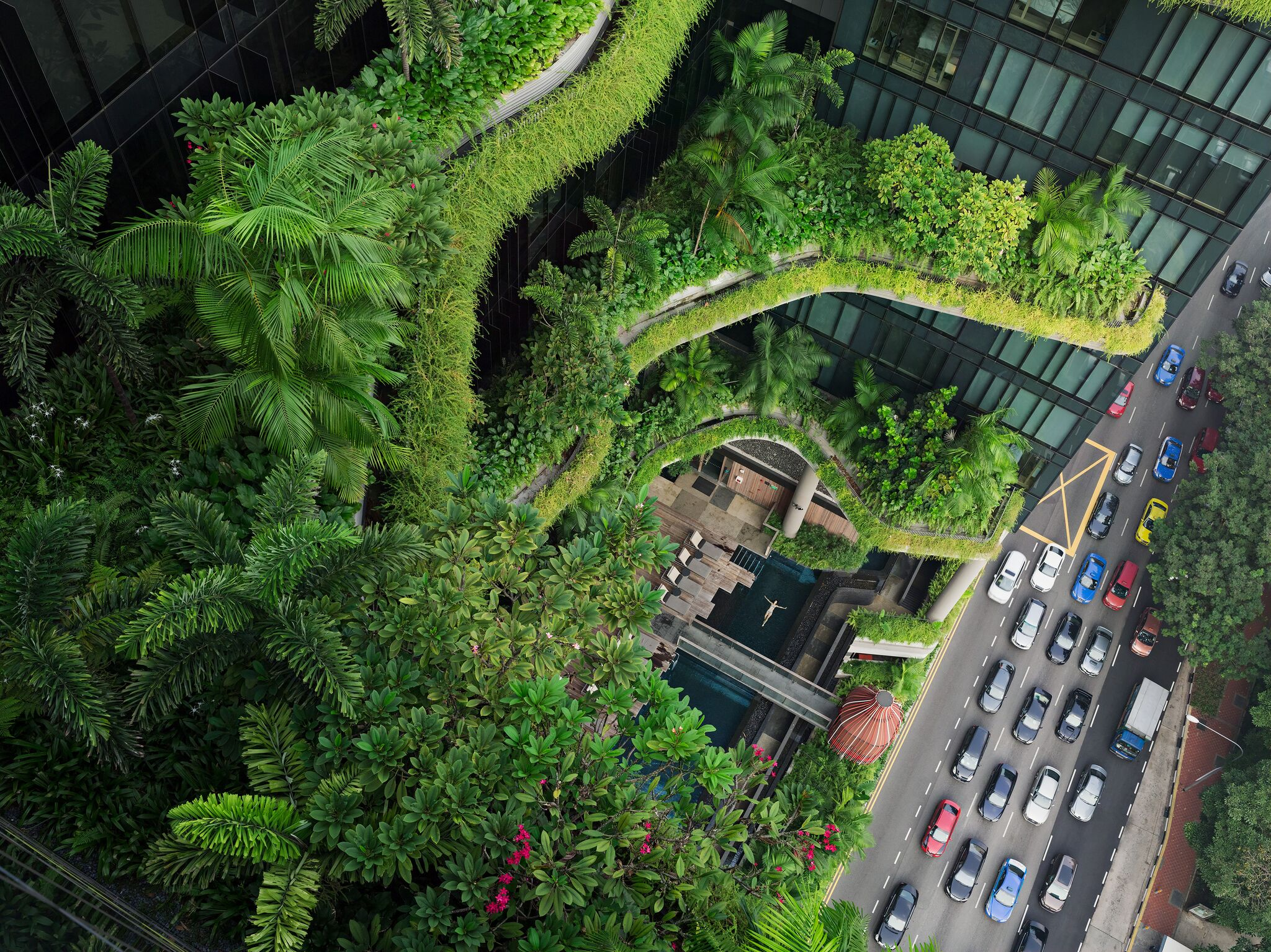 - Esme Swimming, Parkroyal on Pickering, Singapore © Lucas Foglia. Courtesy of Michael Hoppen Galle