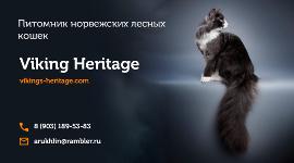 Питомник Норвежских Лесных Кошек Viking Heritage