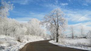 Под белоснежною пушистою фатою деревья все и все кусты...