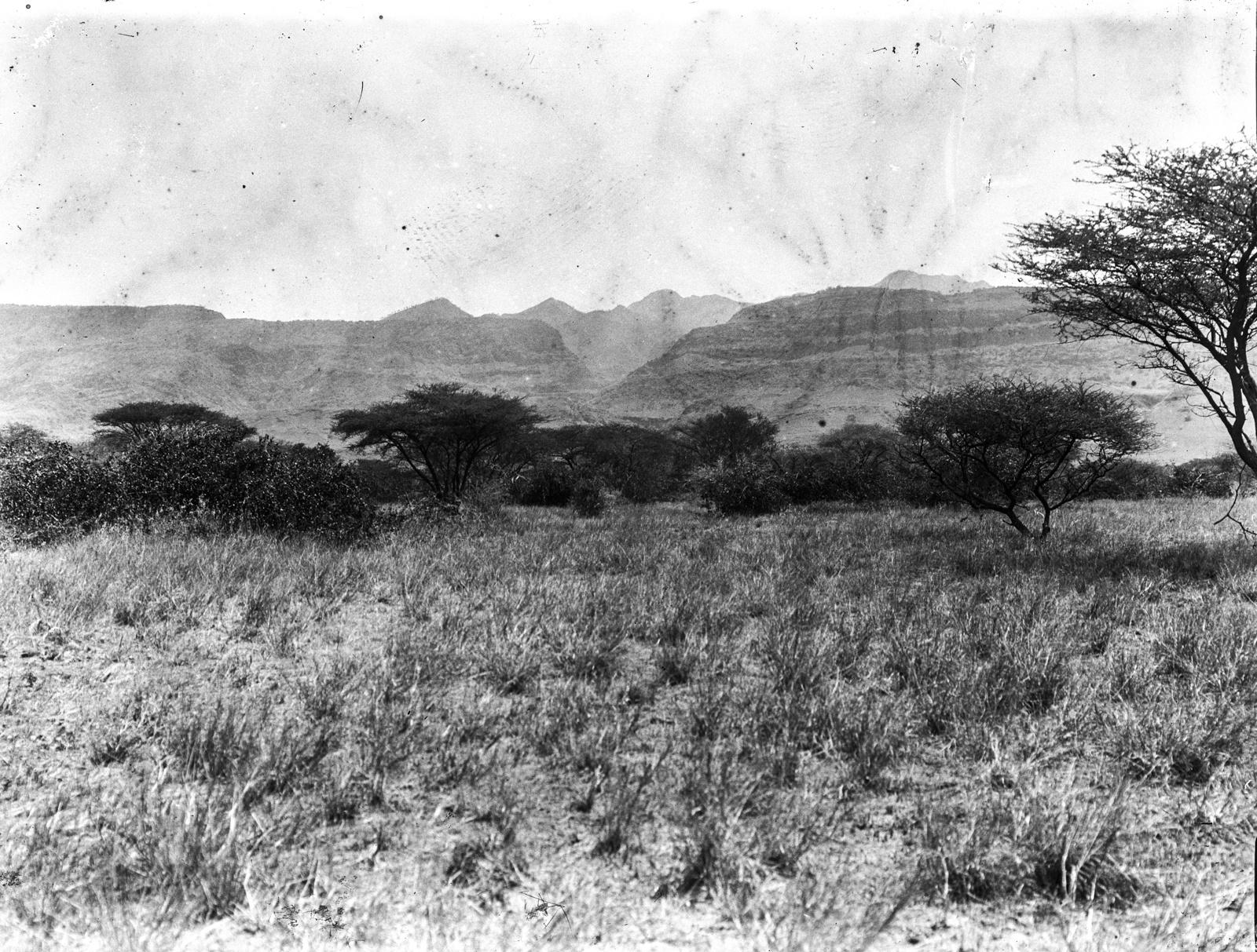 20. Саванна и горный хребет