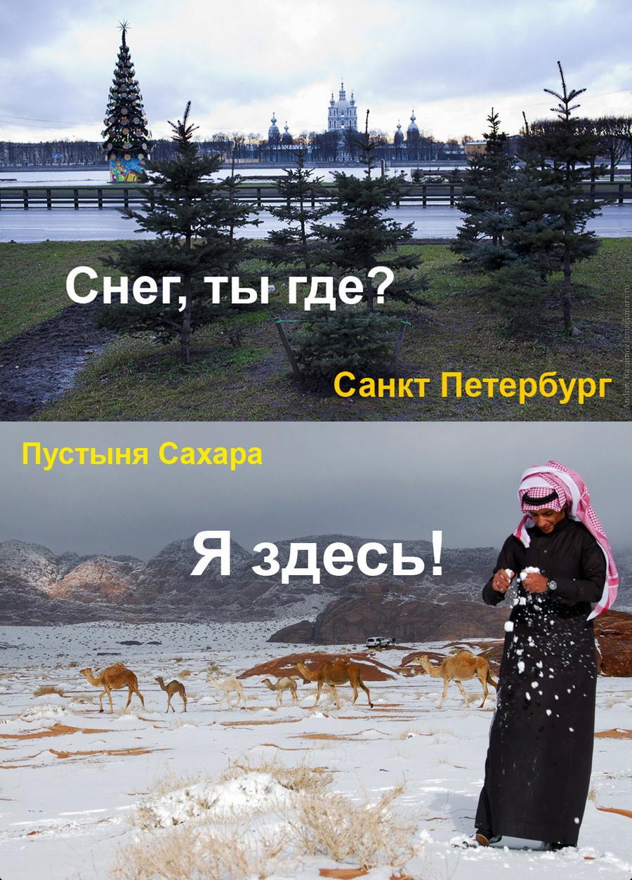 Подборка интересных и веселых картинок 11.01.18