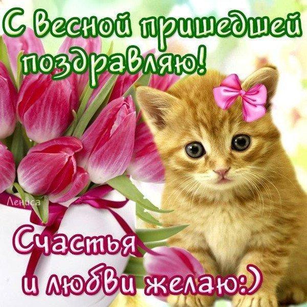 С весной пришедшей поздравляю