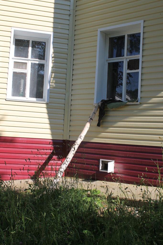 Трапик для кота.