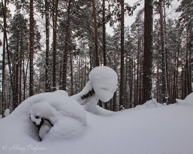 Зимняя уфология