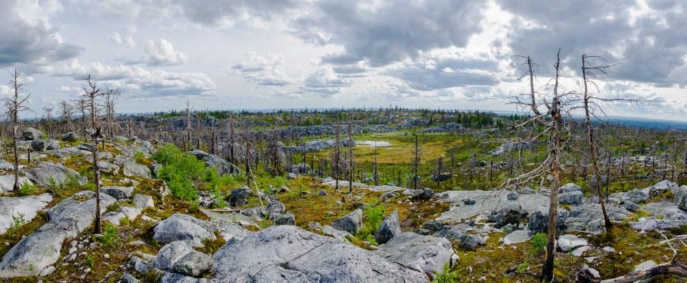 Панорама.   (Кликабельно, 3000×1310 px):