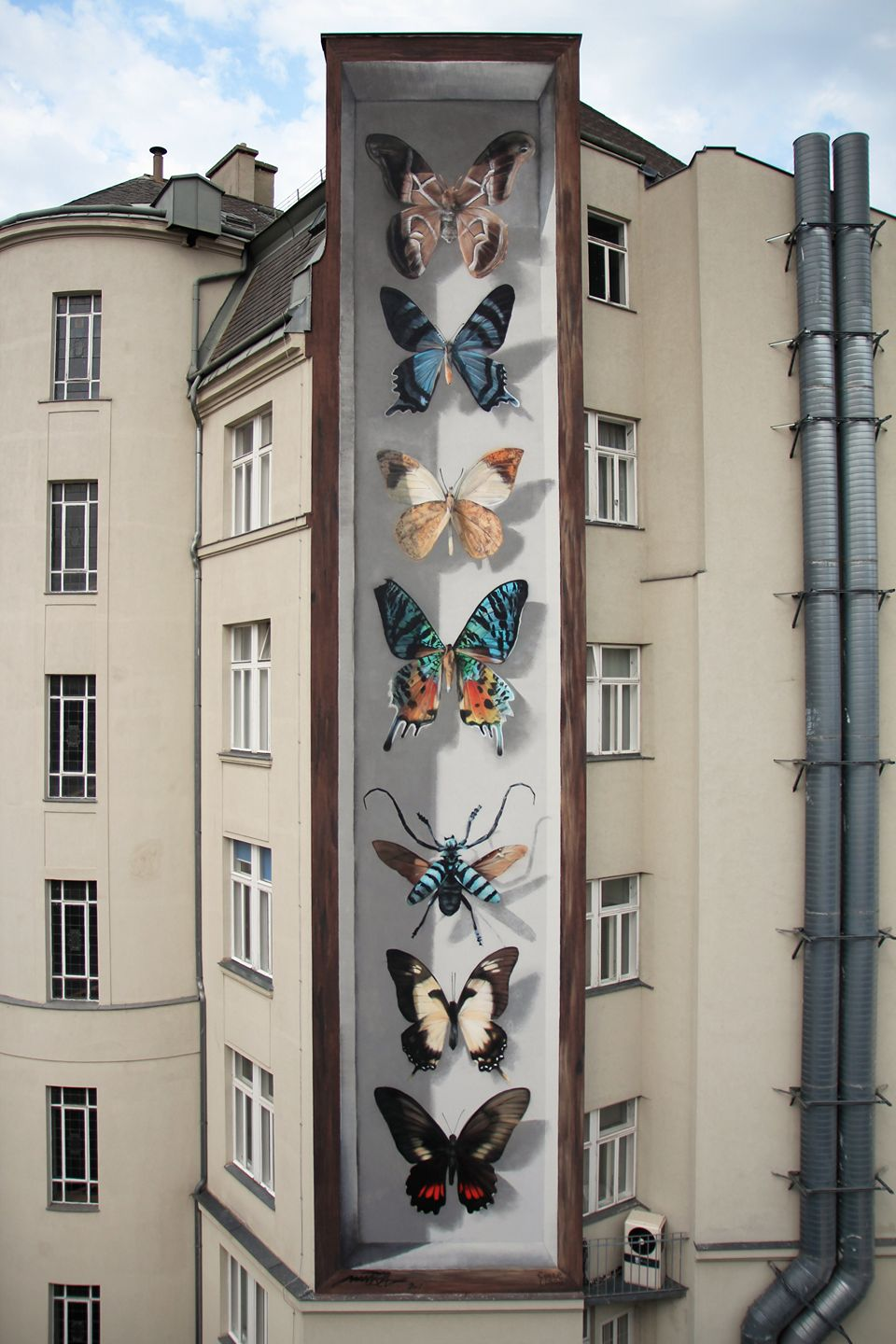 Butterfly Specimen Boxes Painted as Multi-Story Murals by Mantra (7 pics)