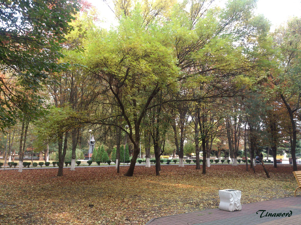 осень-0.jpg
