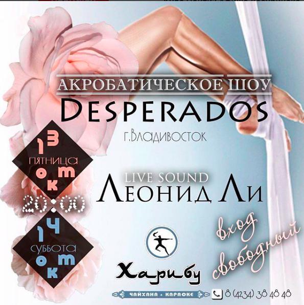 Акробатическое шоу DESPERADOS