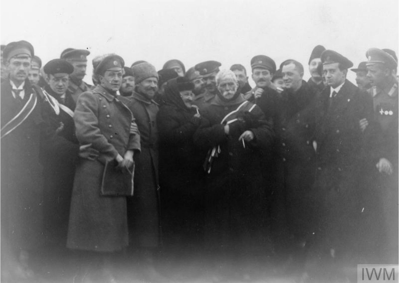 Мадам Брешко-Брешковская (которую часто называют «бабушкой русской революции») возвращается из изгнания