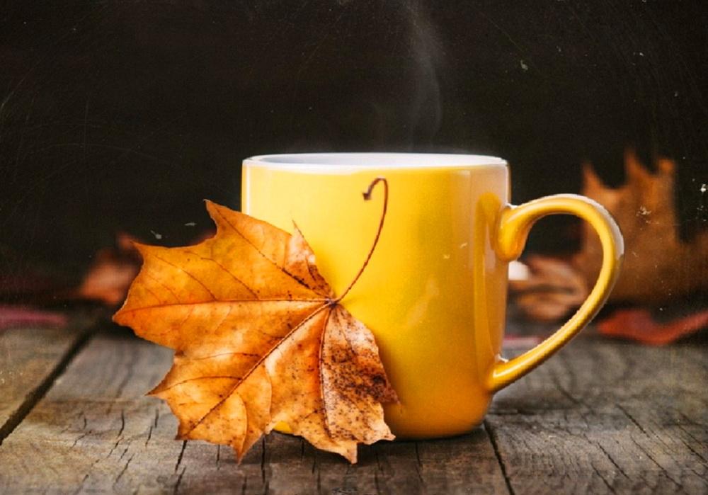 Самые красивые картинки с добрым осенним утром