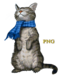 Graphics Cat