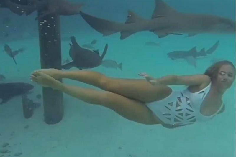 Девушка плавает с акулами