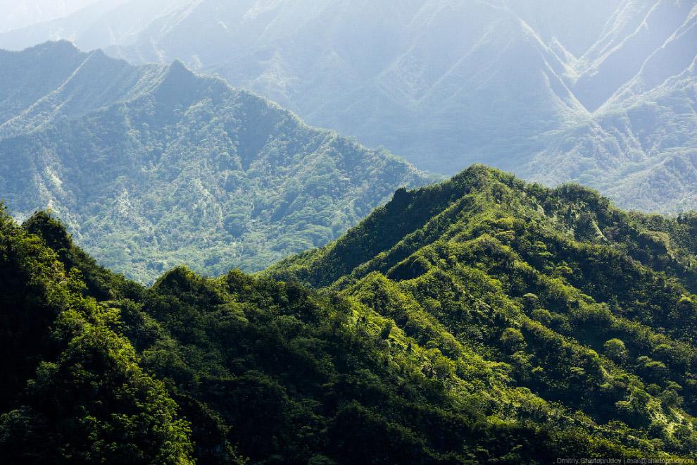 42. Остров являлся местом съёмок известного телесериала «Lost» и фильма «Парк Юрского периода